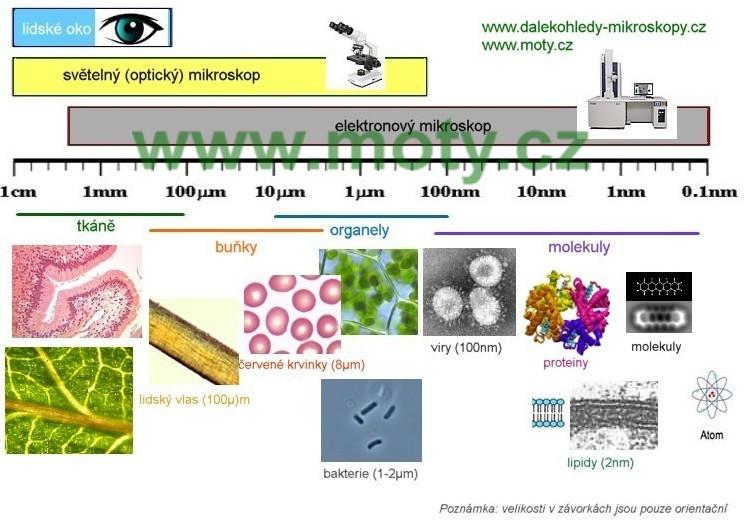 Rozlišení mikroskopu