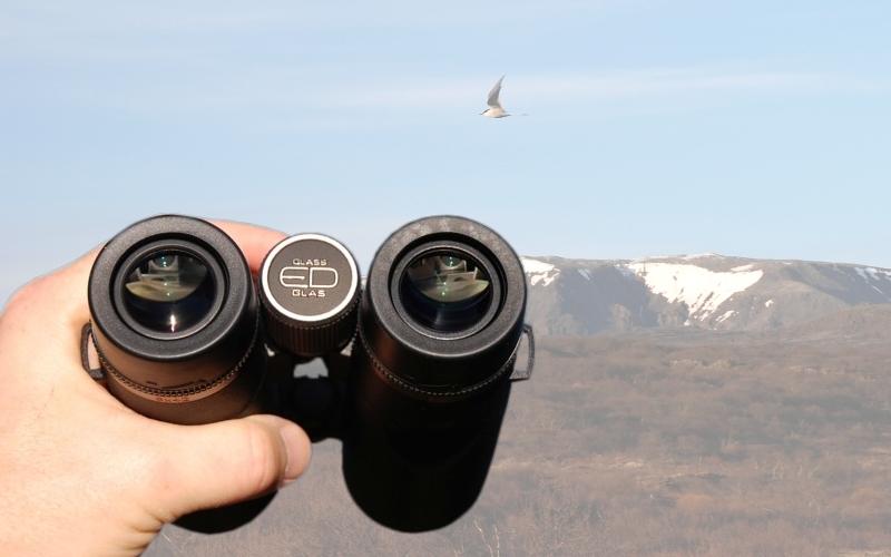Jak vybrat dalekohled?